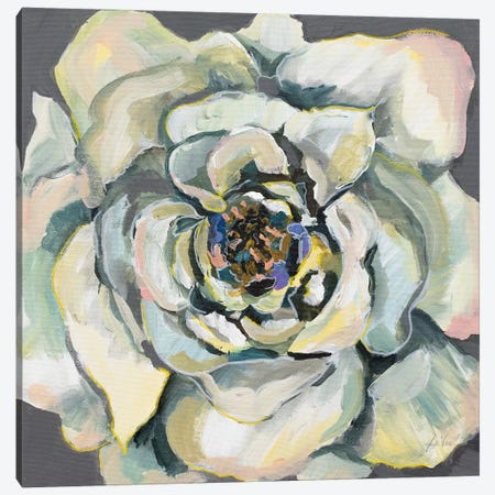 Bloom I Canvas Print #JVE38} by Jeanette Vertentes Canvas Art Print
