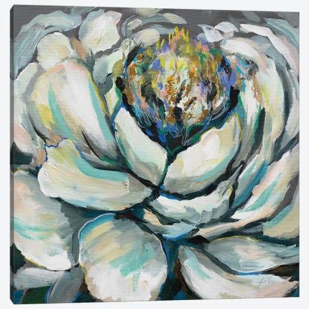 Bloom II Canvas Print #JVE39} by Jeanette Vertentes Art Print