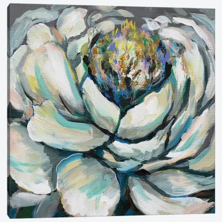 Bloom II Canvas Print #JVE39} by Jeanette Vertentes Art Print