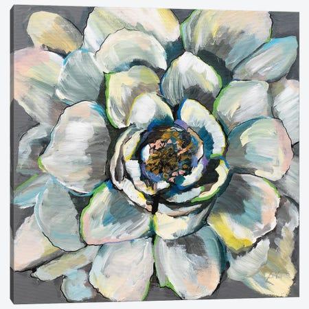 Bloom III Canvas Print #JVE40} by Jeanette Vertentes Canvas Wall Art