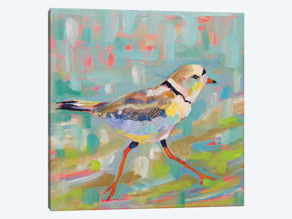 Coastal Plover I by Jeanette Vertentes 1-piece Canvas Wall Art