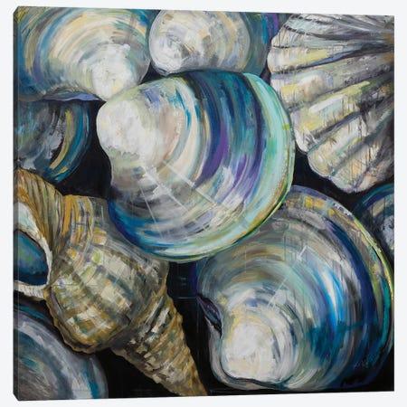 Key West Shells 3-Piece Canvas #JVE71} by Jeanette Vertentes Art Print