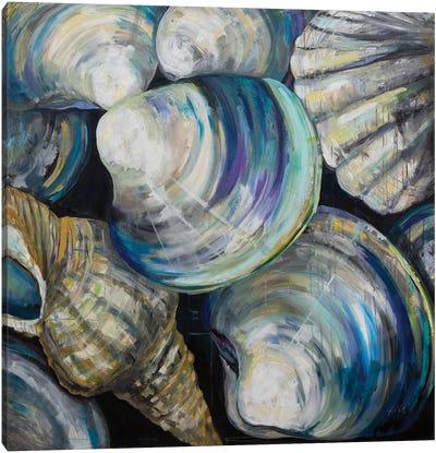 Key West Shells Canvas Art Print