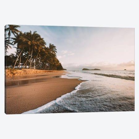 Palm Cove Golden Beach Sunrise Canvas Print #JVO127} by James Vodicka Canvas Print