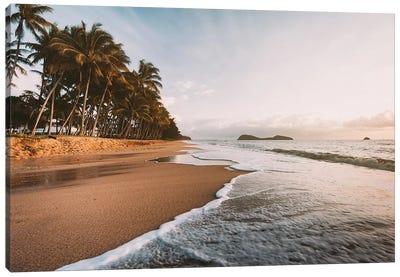 Palm Cove Golden Beach Sunrise Canvas Art Print