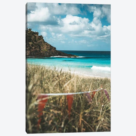 Pristine Island Beach Through The Grass Canvas Print #JVO136} by James Vodicka Canvas Wall Art