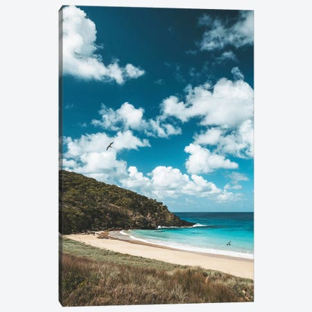Secluded Island Beach Blue Water (Tall) Canvas Print #JVO159} by James Vodicka Canvas Art Print