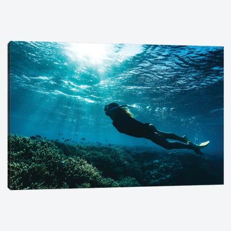 Snorkeller Girl Reef Light Rays Canvas Print #JVO165} by James Vodicka Canvas Print