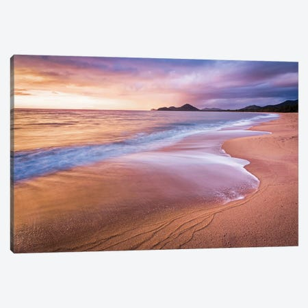 Stormy Beach Sunrise Palm Cove Canvas Print #JVO169} by James Vodicka Canvas Art