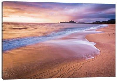Stormy Beach Sunrise Palm Cove Canvas Art Print