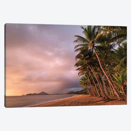 Stormy Beach Sunrise Palm Cove 2 Canvas Print #JVO170} by James Vodicka Art Print