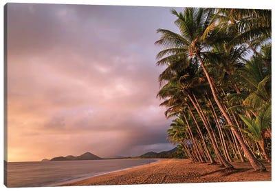 Stormy Beach Sunrise Palm Cove 2 Canvas Art Print