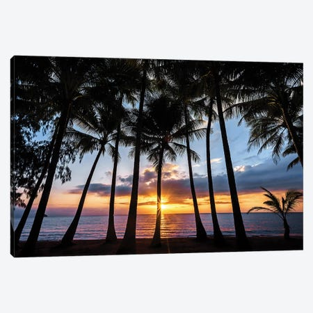 Sunrise Through Beach Palms Canvas Print #JVO180} by James Vodicka Canvas Artwork