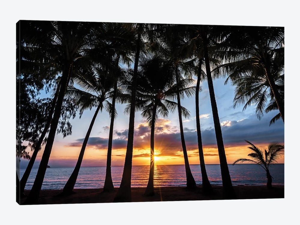 Sunrise Through Beach Palms by James Vodicka 1-piece Canvas Print