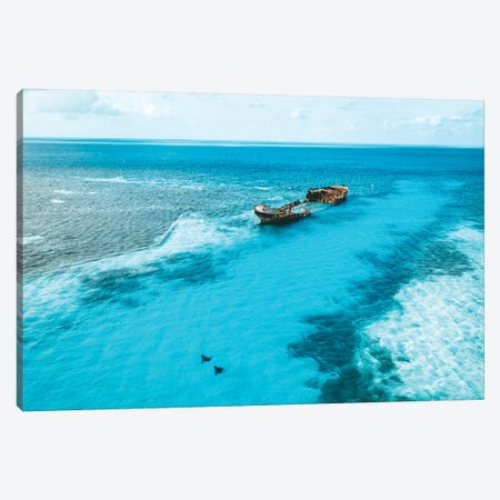 Tropical Island Shipwreck & Eagle Rays Canvas Print #JVO203} by James Vodicka Canvas Art Print