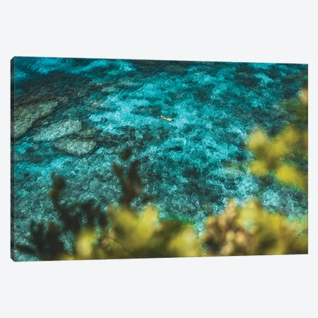 Turquoise Coral Reef with Snorkeller Canvas Print #JVO209} by James Vodicka Canvas Print