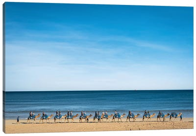 Cable Beach Camels Canvas Art Print