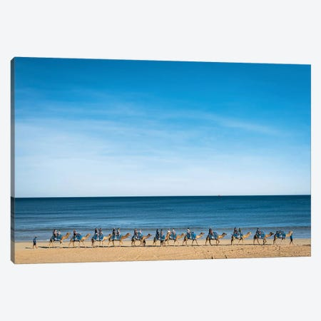 Cable Beach Camels Canvas Print #JVO20} by James Vodicka Canvas Wall Art