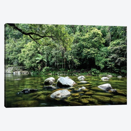 Daintree Rainforest Calm River Landscape Canvas Print #JVO33} by James Vodicka Art Print
