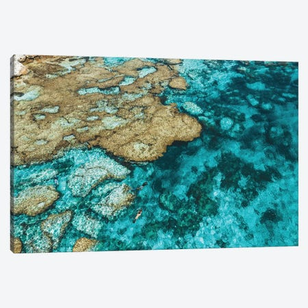 Little Armstrong Bay Reef Snorkeller Aerial Canvas Print #JVO85} by James Vodicka Art Print