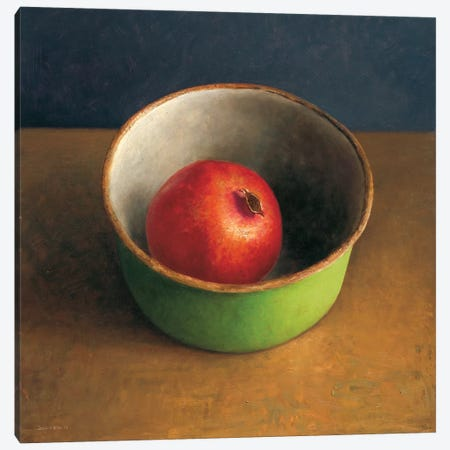 Green Bowl II Canvas Print #JVR3} by Jos van Riswick Canvas Art