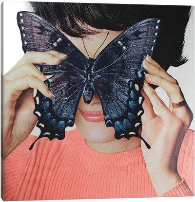 Morpho Butterfly Canvas Art Print