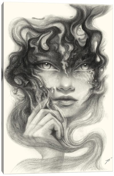 Innerspace Canvas Art Print