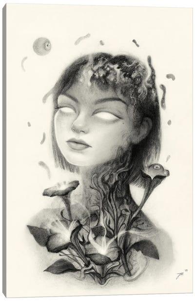 Prospect Canvas Art Print