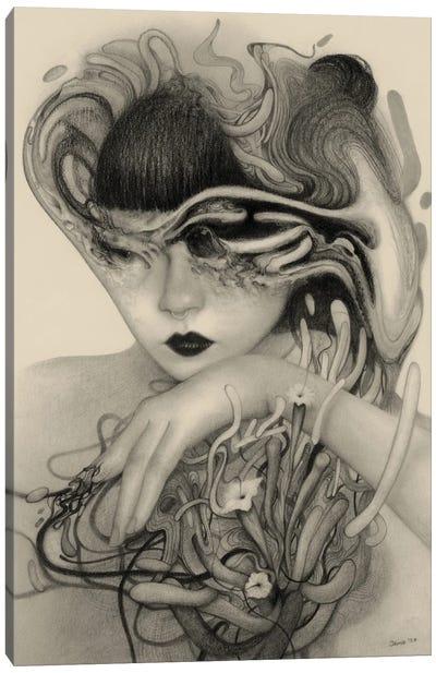 Entropy Canvas Art Print