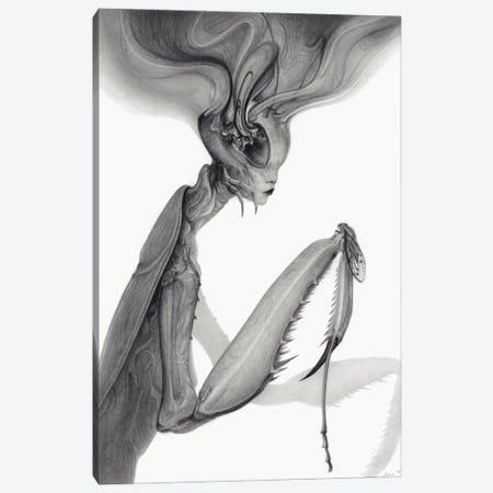 Mantis Canvas Print #JWL33} by Jamie Wells Art Print