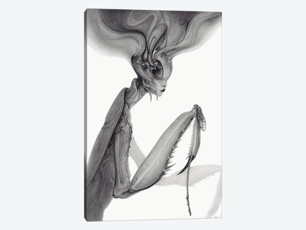 Mantis by Jamie Wells 1-piece Art Print