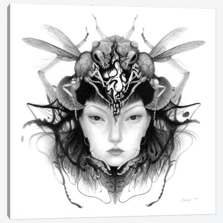 Queen Canvas Print #JWL34} by Jamie Wells Canvas Wall Art