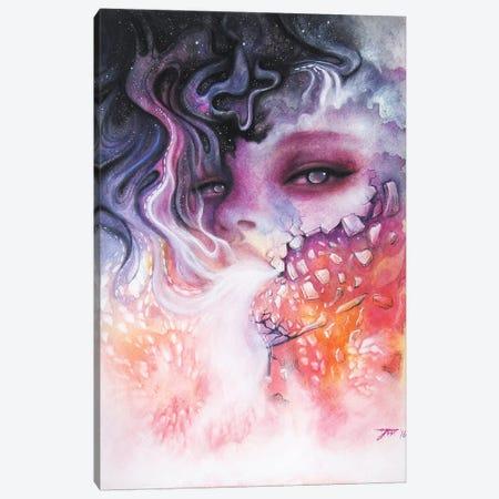Fade Canvas Print #JWL9} by Jamie Wells Canvas Art