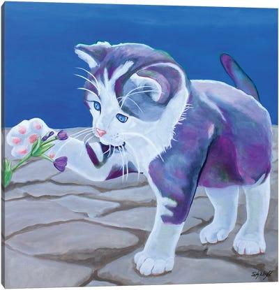 Kitten Discoveries Canvas Art Print