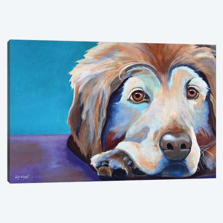 A Little Rest And Relaxation (Golden Retriever) Canvas Print #JWR27} by Jody Wright Canvas Art Print