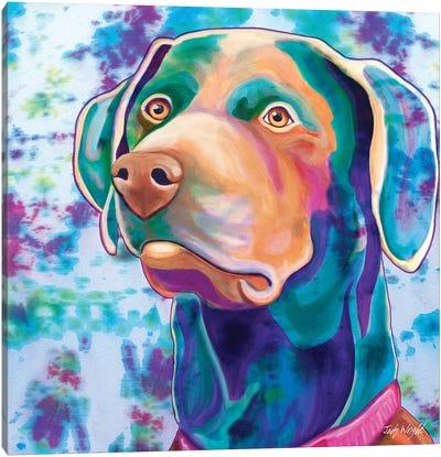 Tie Dye Labrador Canvas Art Print