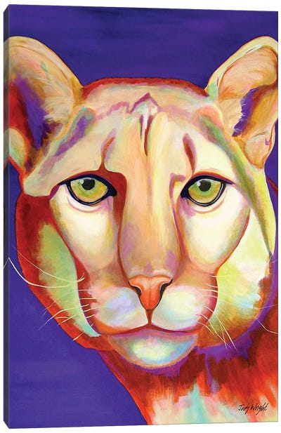Focus! Cougar Canvas Art Print
