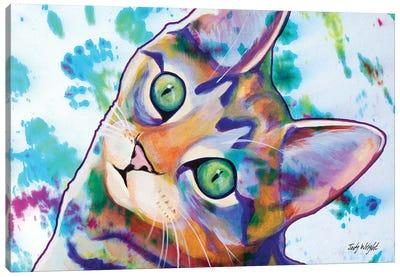 Tie Dye Kitten Canvas Art Print