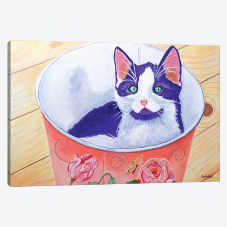 Bucket Of Love Kitten Canvas Print #JWR4} by Jody Wright Canvas Art