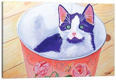 Bucket Of Love Kitten Canvas Art Print