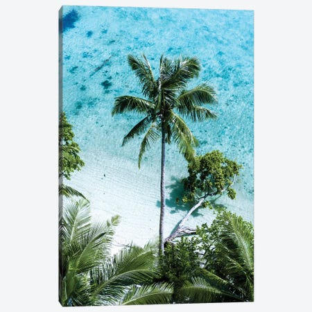 Palm Tree Paradise Canvas Print #JXR40} by Jaxon Roberts Canvas Artwork