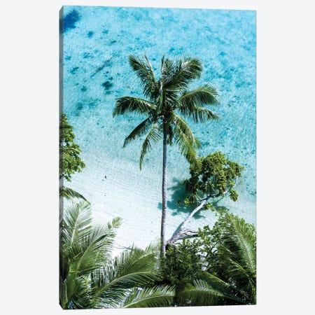 Palm Tree Paradise Canvas Print #JXR40} by Jaxon Roberts Canvas Artwork