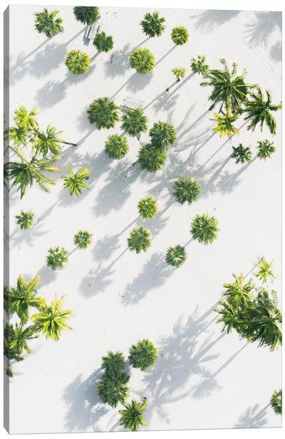 Palm Tree Paradise High Res Canvas Art Print