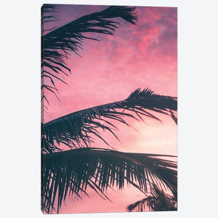 Tropical Sunset I Canvas Print #JXR74} by Jaxon Roberts Canvas Art