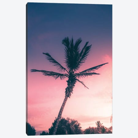 Tropical Sunset II Canvas Print #JXR75} by Jaxon Roberts Canvas Art