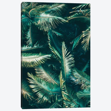 Tropical VIbes Canvas Print #JXR76} by Jaxon Roberts Canvas Artwork