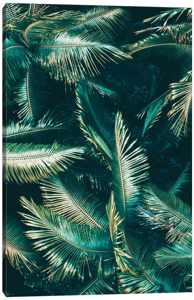 Tropical VIbes Canvas Art Print