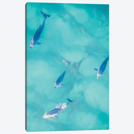 Cruisy Dolphins I Canvas Print #JXR8} by Jaxon Roberts Canvas Art