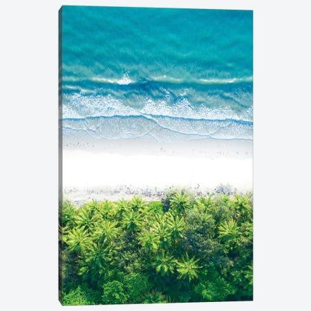 Where The Jungle Meets The Sea I Canvas Print #JXR91} by Jaxon Roberts Canvas Art Print
