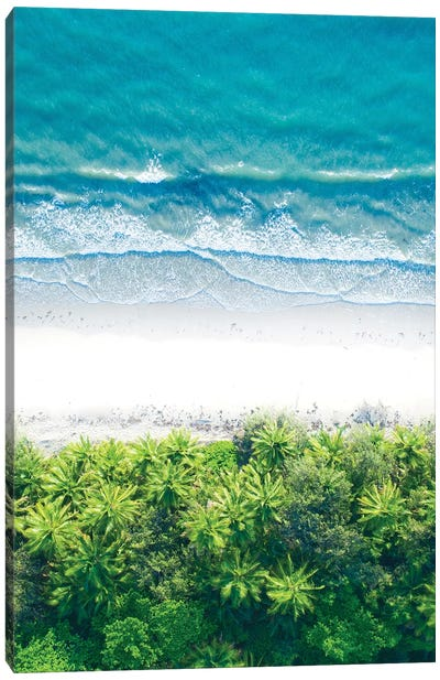 Where The Jungle Meets The Sea I Canvas Art Print